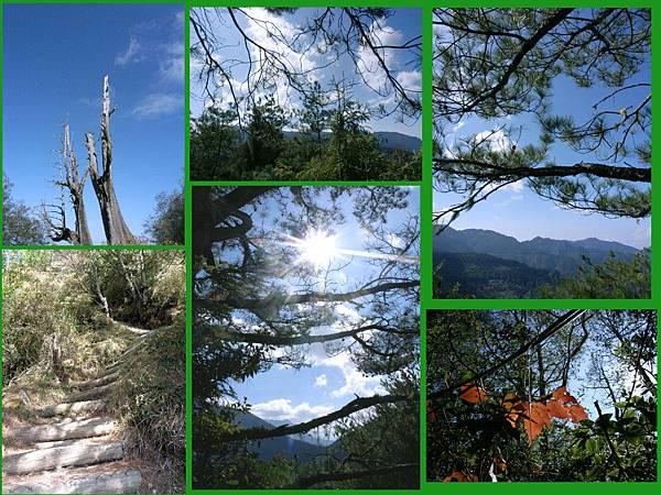 20100101東甫山01.jpg