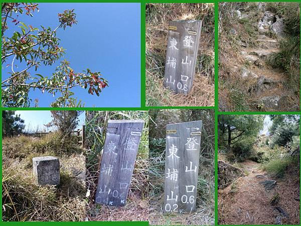 20100101東甫山02.jpg