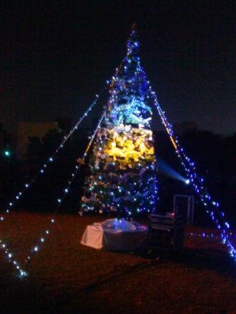 2010/12/23 南方聖誕夜