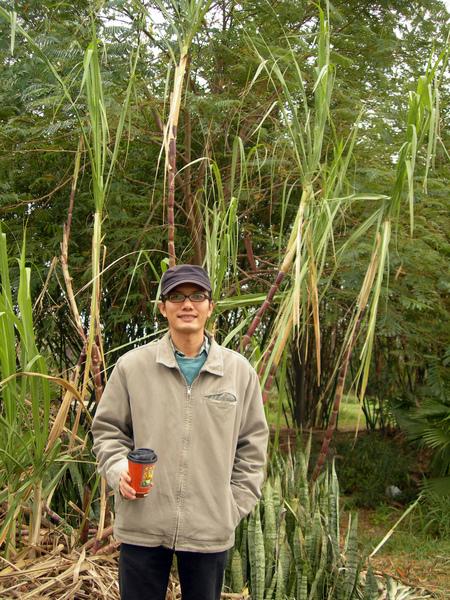 喵哥和阿姨農場的甘蔗合影(照片由喵哥提供)