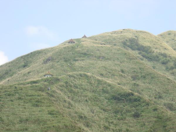 這座山有登山步道可以爬上去喔!