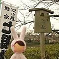 tokyo 0101