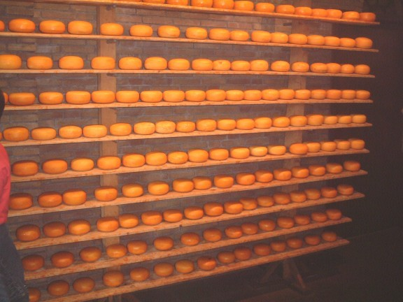 cheeze factory.jpg