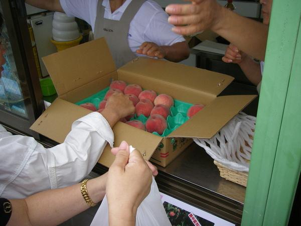 大室山上的超好吃水蜜桃一個100日幣大家爭著買