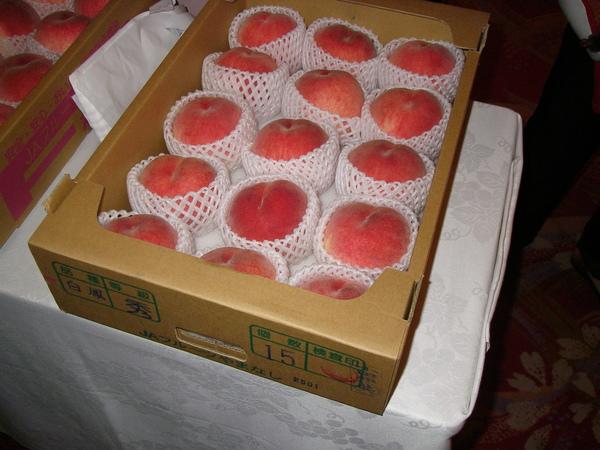 當晚住宿旅館導遊每人贈送一顆比大室山上更大的水蜜桃