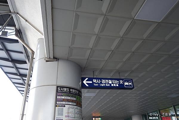01-DSC08395