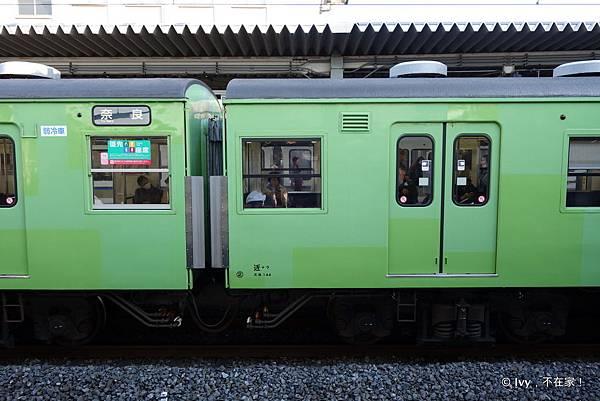 45-DSC07484