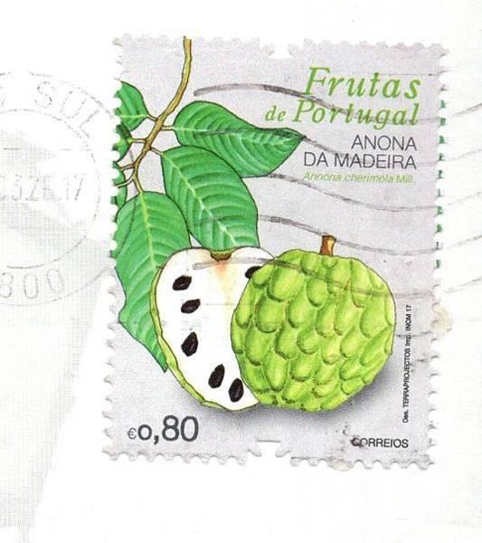 postcard026