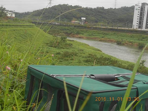 DSCN5629.JPG