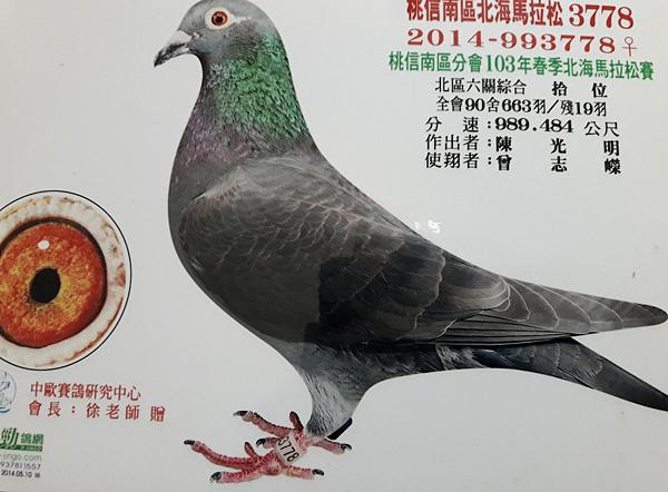 Opera 快照_2018-06-02_114156_www.facebook.com.png