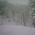 美の雪 By su0055