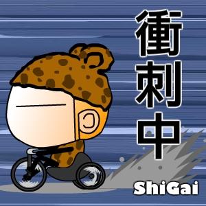 shigai_pic (67).jpg