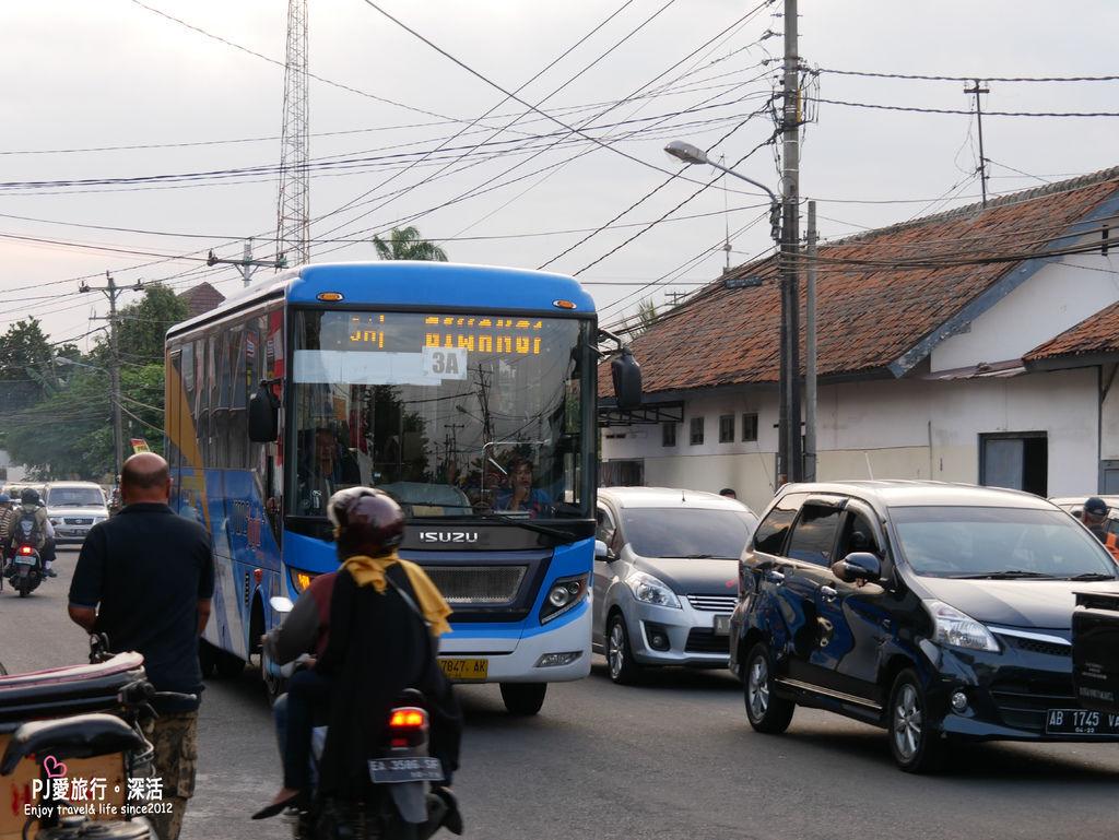 P1030443.JPG