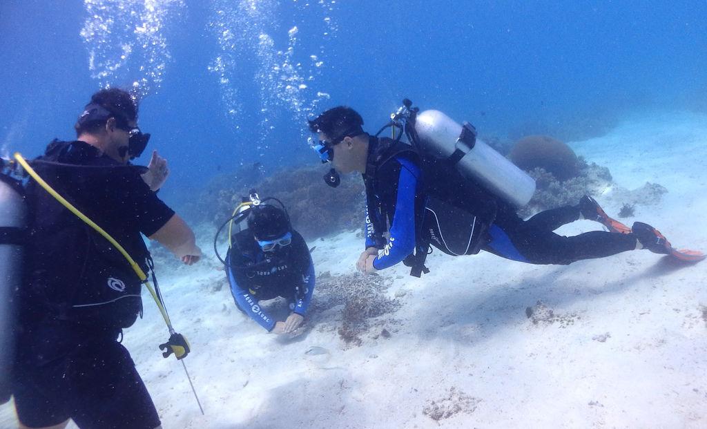 菲律賓薄荷島旅遊海島瘋國外潛水考證照中文教練小班制