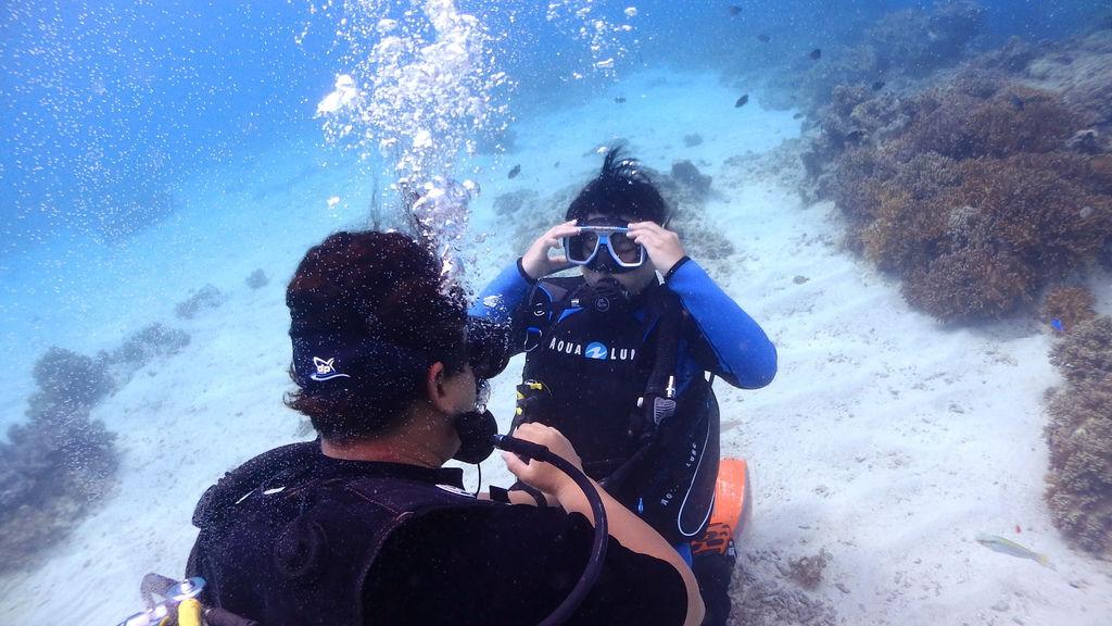 菲律賓薄荷島旅遊PADI潛水考證海島瘋上課地點
