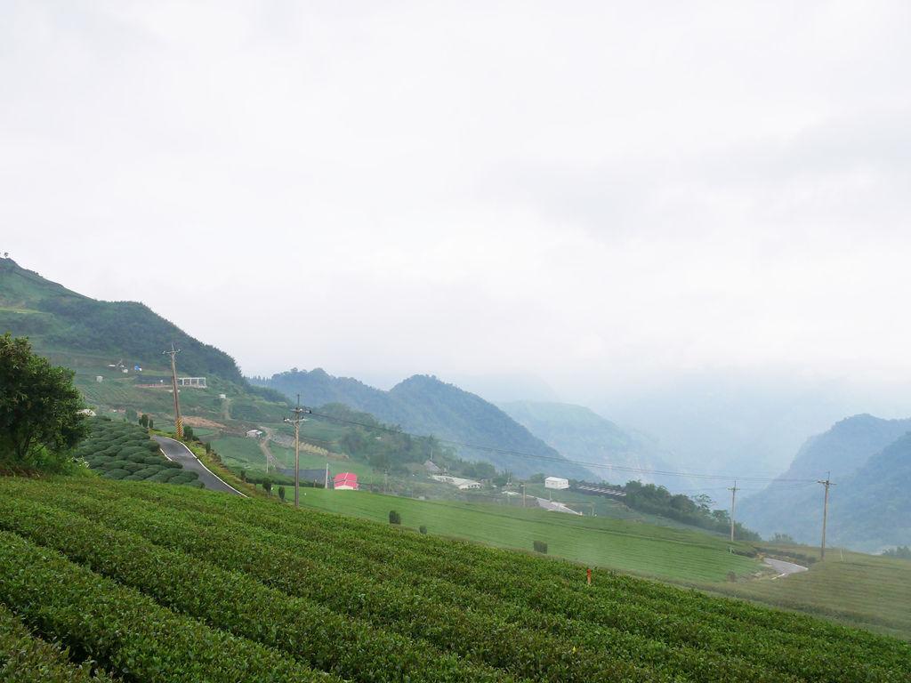 PJ嘉義旅遊阿里山景點2日遊