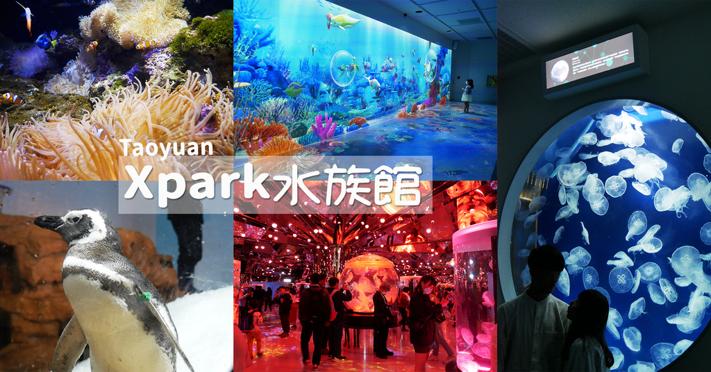 2021桃園新景點Xpark水族館都會水族室內景點打卡熱門