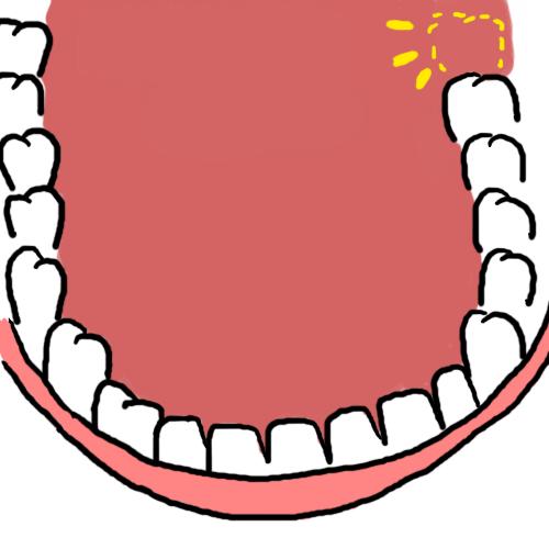 牙醫35.png