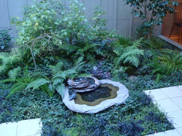 廚房外花園1.JPG