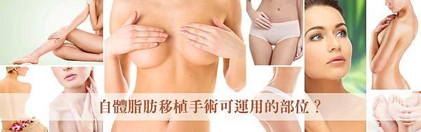 002自體脂肪移植手術豐頰豐胸隆乳豐下巴豐額填補淚溝.jpg