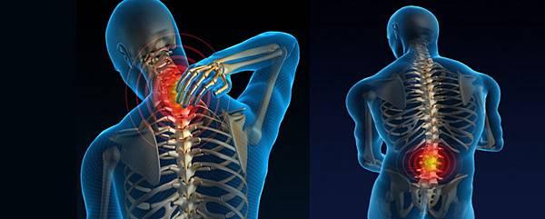 04下背痛可分為哪幾種,形成原因為何?.jpg