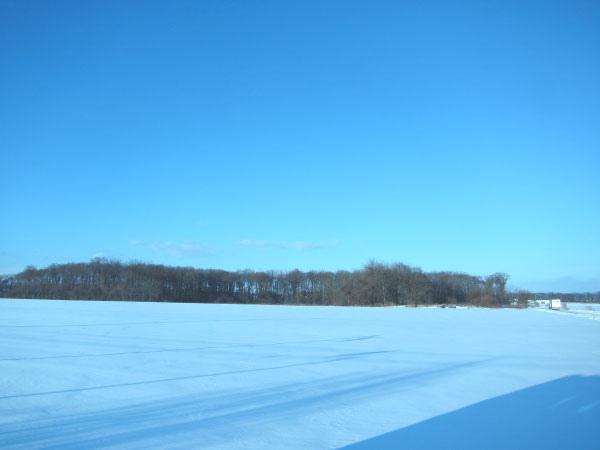2010北海道-186.jpg