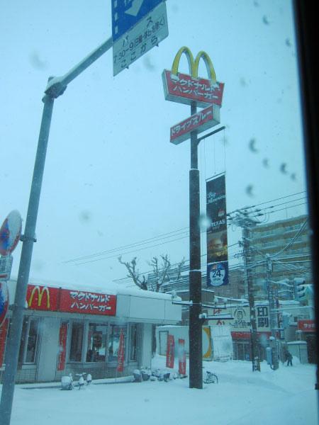 2010北海道-428.jpg