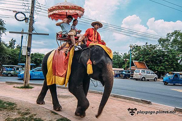 大城 普蘭寺  Wat Phra Ram  (2).jpg