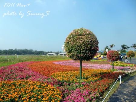 SunnyS-1.jpg