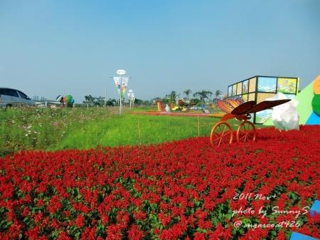 SunnyS-2.jpg