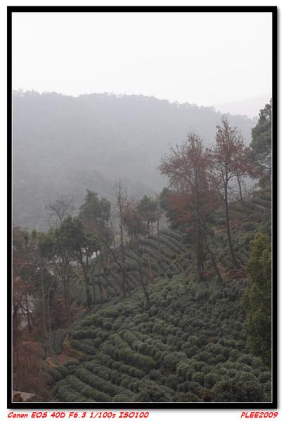 杭州6_05.jpg
