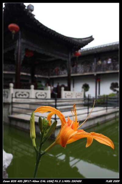YangChou_44.jpg