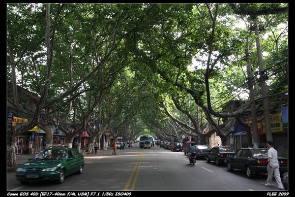 Nanjing4_01.jpg