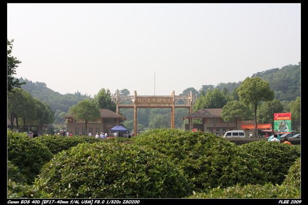 Nanjing6_03.jpg