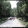 Nanjing5_54.jpg