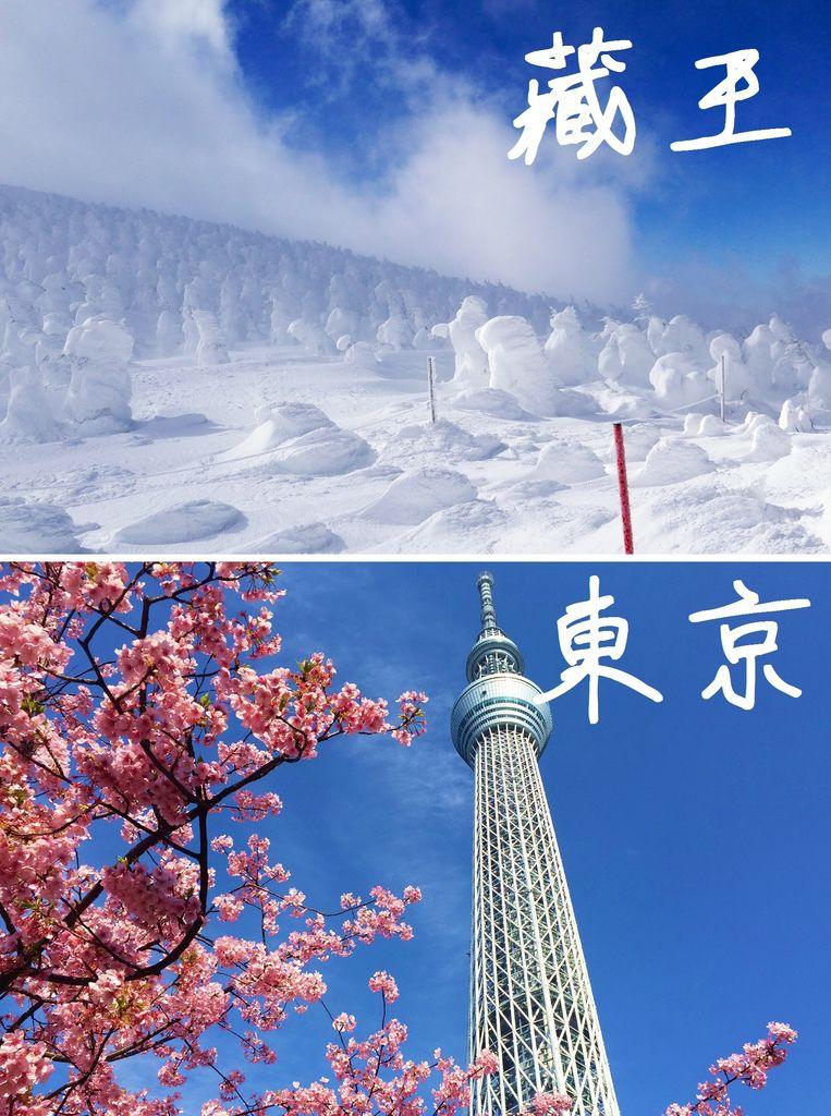 4.山形、東京