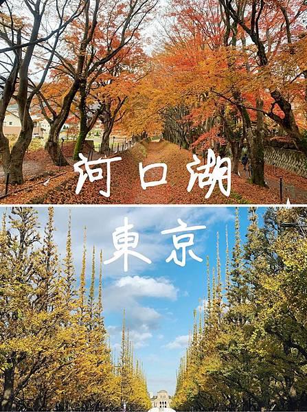 12. 河口湖、東京
