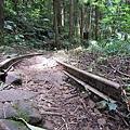 經過一條古遠老舊的鐵軌