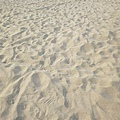 原來桃園也有海水浴場, 還是白沙, 水也比濱海那一帶乾淨多了~~只是沒人想接管這個海灘XD