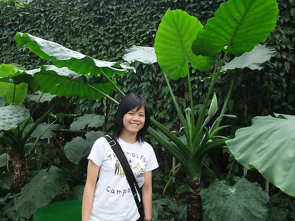 這植物園還不錯耶