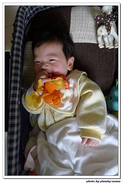 副食品-洋蔥 (19).jpg