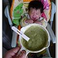 副食品-菠菜 (9).jpg