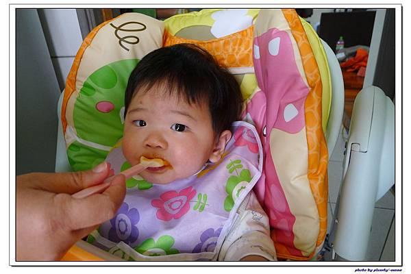 副食品-木瓜 (5)