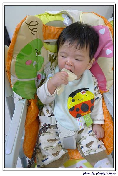 副食品-吐司 (8)