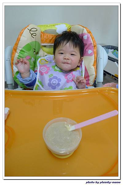 副食品-蘋果豬肉米糊 (12)