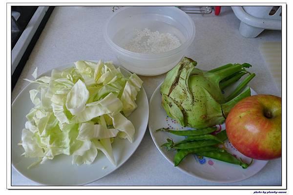 副食品-蔬菜蘋果米糊 (2)