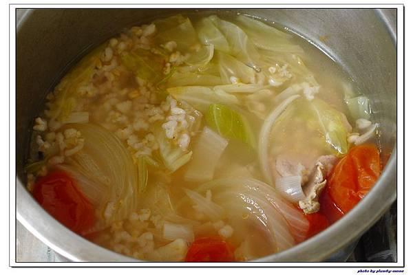 副食品-蔬菜蘋果豬肉五穀米糊 (13)