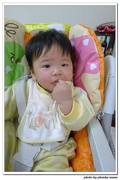 副食品-花椰菜 (3)