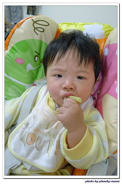 副食品-花椰菜 (4)