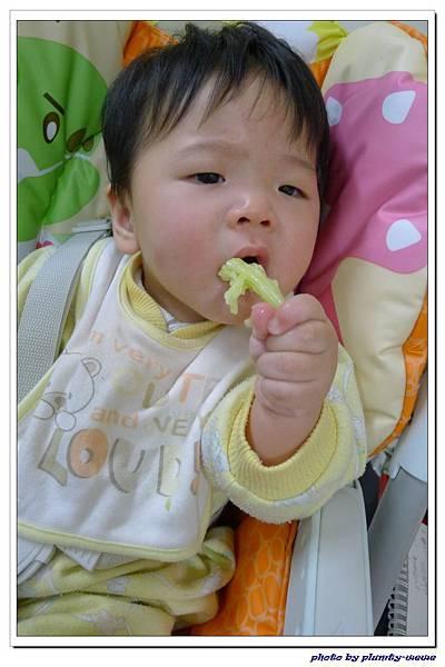 副食品-花椰菜 (5)
